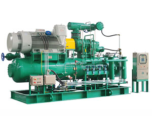 Industrial Refrigeration Heat Pump Applied Screw Compressor